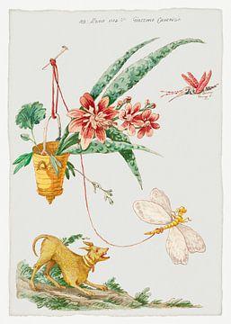 Blumendesign mit Hund und Insekten, Giacomo Cavenezia