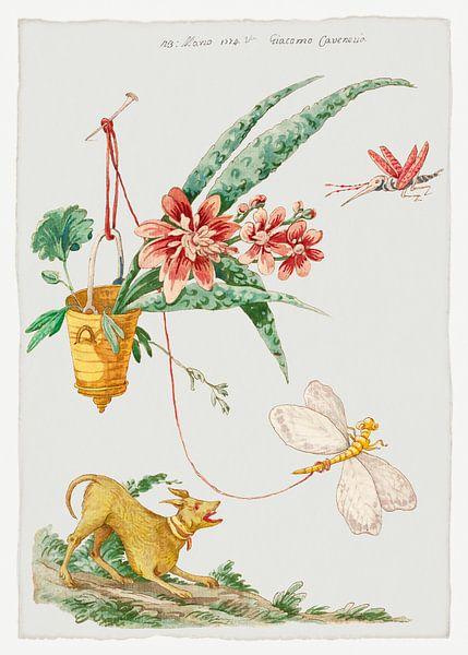 Blumendesign mit Hund und Insekten, Giacomo Cavenezia von Meesterlijcke Meesters