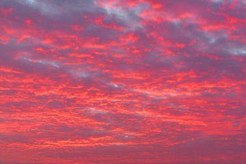 Zonsondergang met kleurrijke wolken in roze en paars van Sjoerd van der Wal