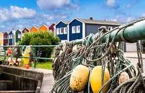 Helgoland krab kraampjes in de haven van Animaflora PicsStock