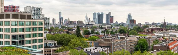 Rotterdam Skyline (Panorama)