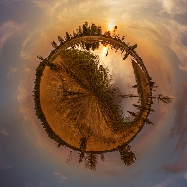 Kampina in stereografische projectie van Ronne Vinkx
