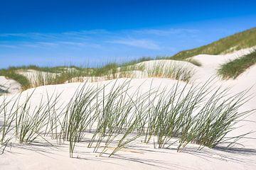 Met de wind gevlucht - in de duinen van Sylt van Reiner Würz / RWFotoArt