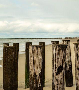 Staand Golfbrekers op het strand in Zeeland, staand van Helene van Rijn