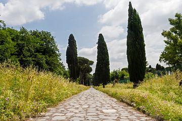 Via Appia Antica 01 von Marcel van der Voet