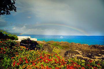 Rainbow Beach Meer von Tonny Visser-Vink