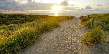 Zon en zee aan het strand van Dirk van Egmond