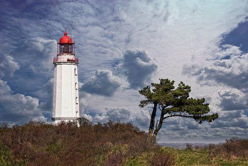 Leuchtturm Dornbusch Hiddensee von Joachim G. Pinkawa