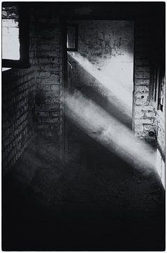 Dust van Jaco Verheul
