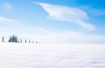 winter en sneeuw van John Leben