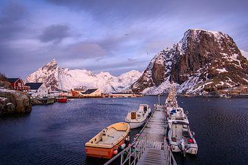 Winterlicher Sonnenaufgang auf den Lofoten von Samantha van Leeuwen