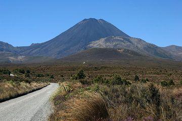 Mount Ngauruhoe (Untergangsberg) Tongariro-Nationalpark von Jeroen van Deel