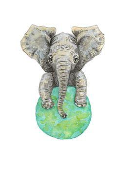 Playful baby elephant van Mies To Go