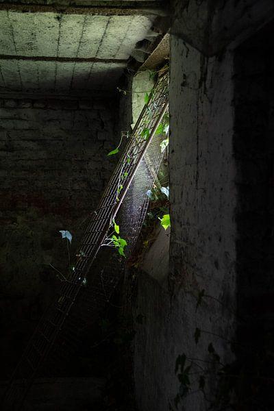 verlaten huis van Simen Crombez