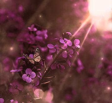 zonnestralen door paarse bloemen van Jessica Vreede