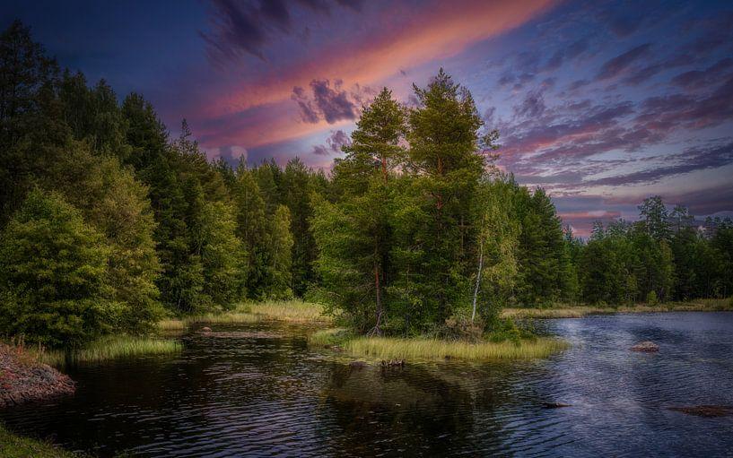 Mooi Zweden van Mart Houtman