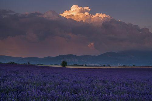 Lavendel Cumulonimbus van Joris Pannemans - Loris Photography