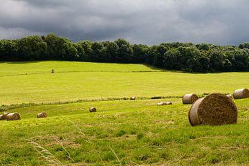 Limburgs landschap - 1 von Arnoud Kunst