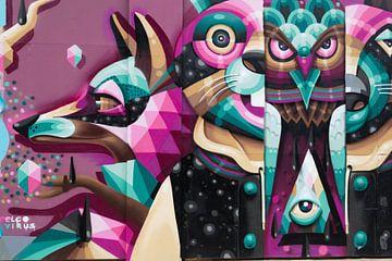 Grafitti van