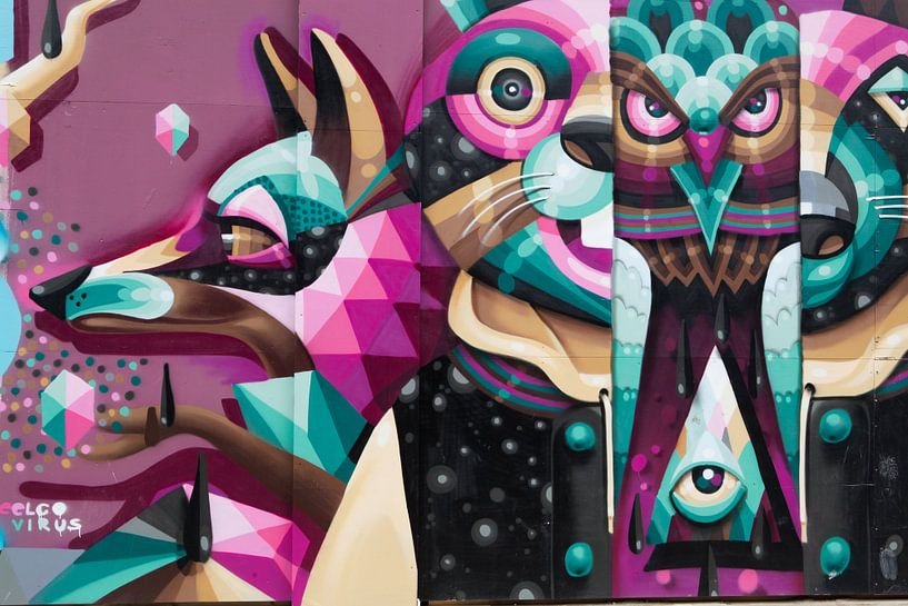 Grafitti van HANS VAN DAM