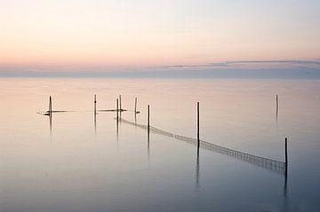 Fishnets von Alexander Tromp