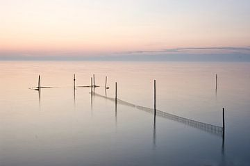 Fishnets van Alexander Tromp