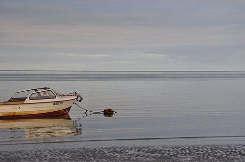 Verlaten bootje Texel van Stefan Hage