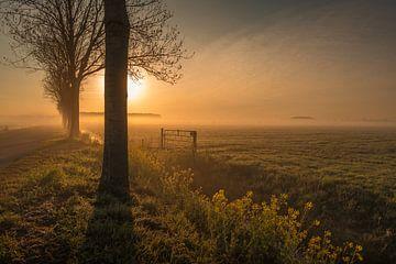 Landschaft am Morgen von Moetwil en van Dijk - Fotografie