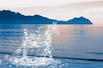 Een paard van waterdruppels nr. 2 van Nannie van der Wal