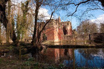 Ruine van Brederode van