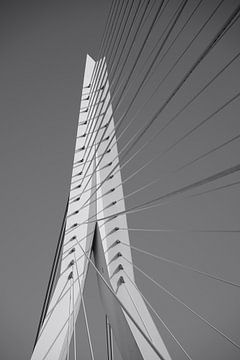 Erasmusbrücke Rotterdam von Femke Looman