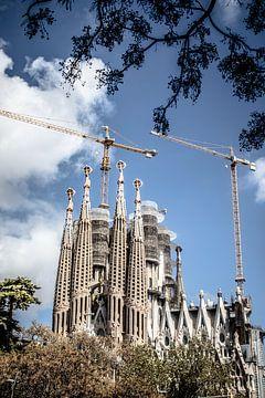 Barcelone sur Eric van Nieuwland