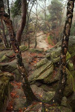 Op de rotsen van Martin Podt