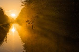 schaduwen bij zonsopkomst
