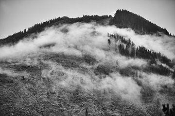 Alpennebel 5 von Bart Rondeel