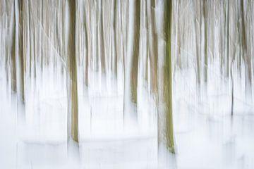 Tanzende Bäume von Eelke Brandsma