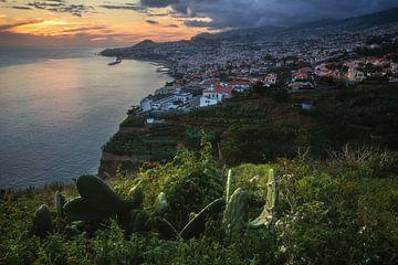 Madeira Funchal zum Sonnenuntergang von Jean Claude Castor