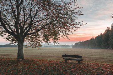 Zonsopgang in de herfst van Steffen Peters