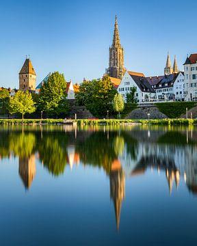 Panorama van de stad Ulm in de lente, met de rivier de Donau en de Dom van Ulm van Daniel Pahmeier