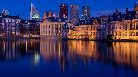 Hofvijver den Haag van Michael van der Burg