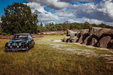 Jaguar 240 van Wolbert Erich