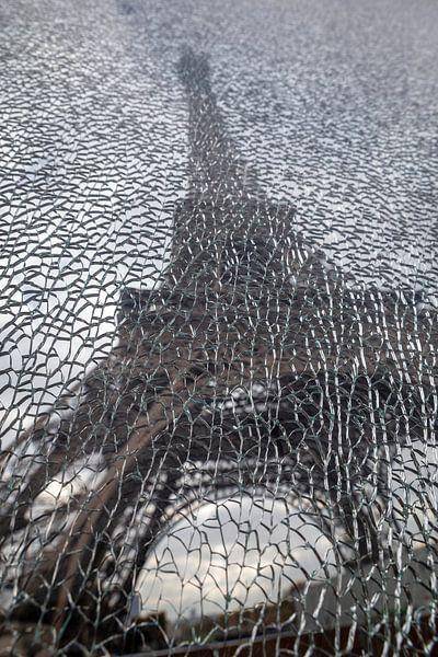 Shards of Paris van Jaap Tempelman