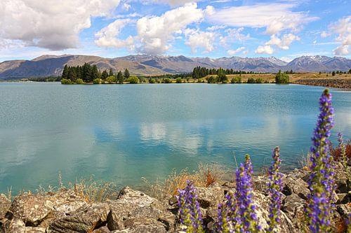 Lake Ruataniwha / Nieuw - Zeeland van Shot it fotografie
