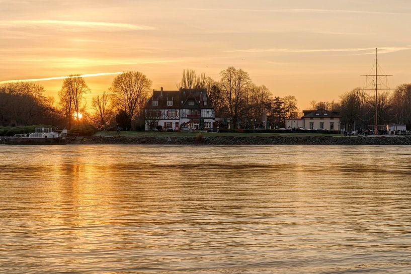 Goldener Sonnenuntergang am Rhein von Uwe Ulrich Grün