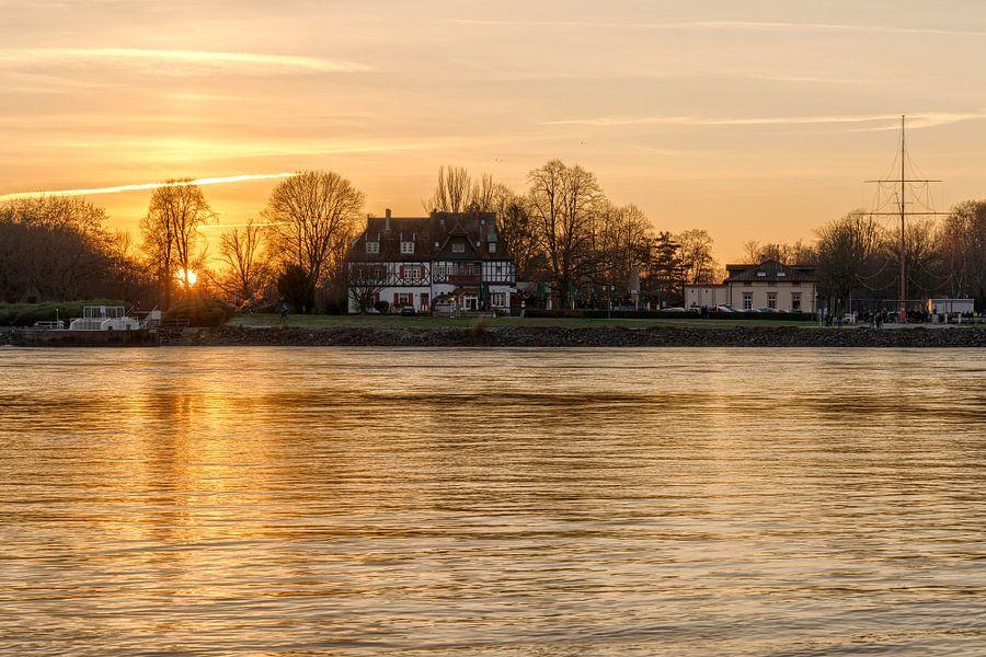 Goldener Sonnenuntergang am Rhein