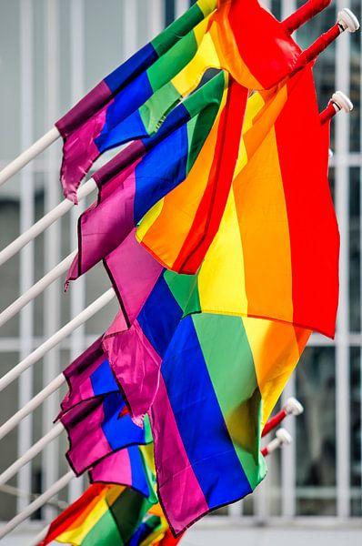 Regenboogvlaggen van Frans Blok