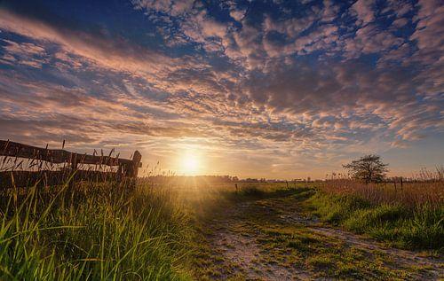 Sunburst De Onlanden met hek