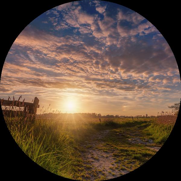 Sunburst De Onlanden met hek van R Smallenbroek