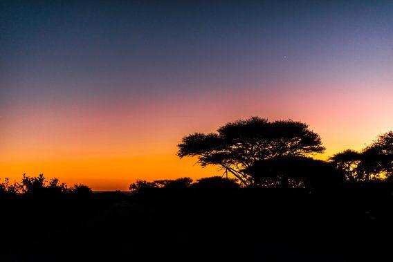 Zonsopkomst Mozambique van Rob Smit