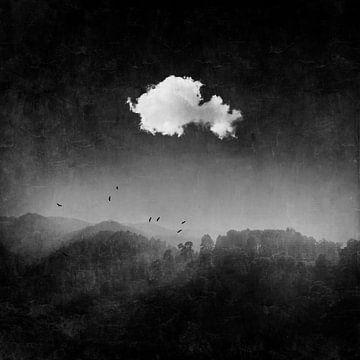 Wolk boven donker boslandschap van Dirk Wüstenhagen